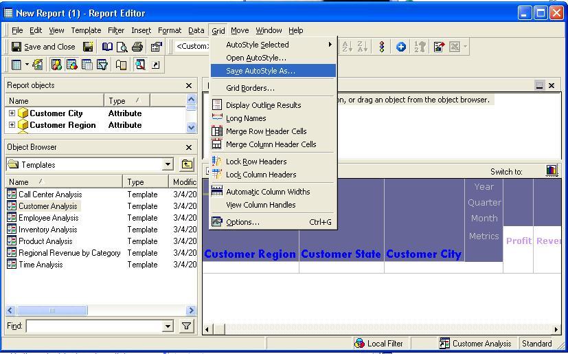 Schema van MicroStrategy Web Report Editor.
